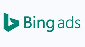 bing[1]
